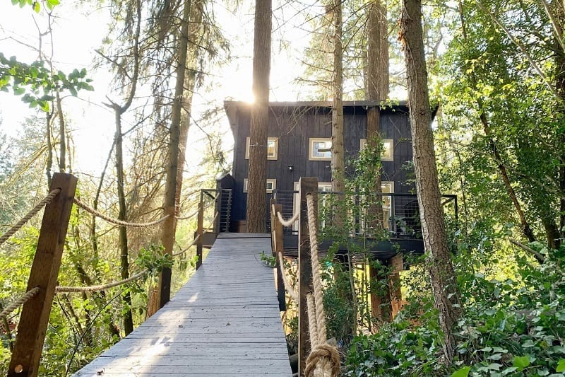 'Eagle's Nest' Treehouse with Zipline