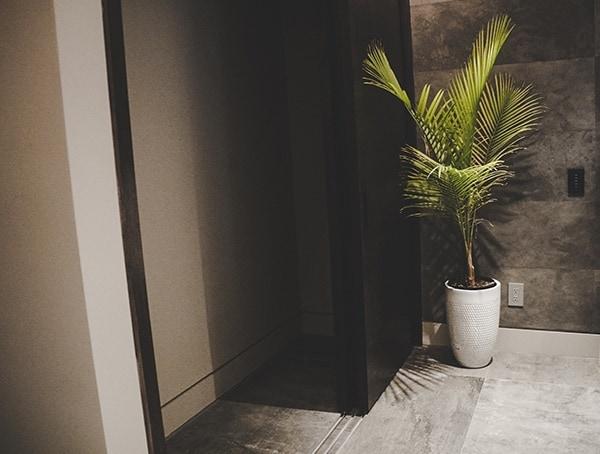 2019 New American Remodel Home Hallway Design