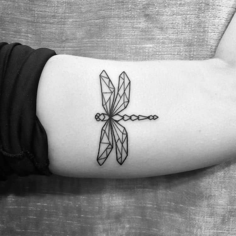 A geometic dragonfly showing the real image of life; one line leading to a certain world!