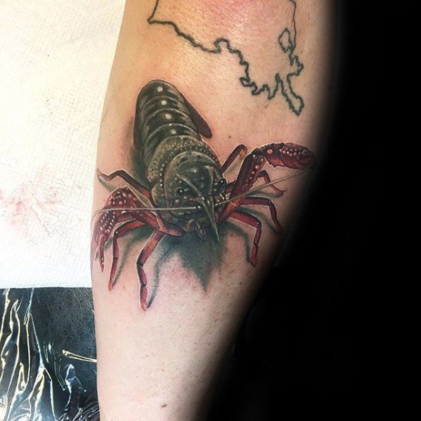 3d Distinctive Male Crawfish Tattoo Designs On Outer Forearm