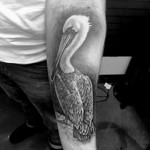 3d Heavily Shaded Inner Forearm 3d Male Cool Pelican Tattoo Ideas