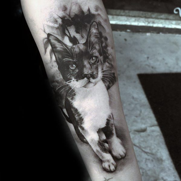 3d Realistic Forearm Guys Designs Cat Tattoos