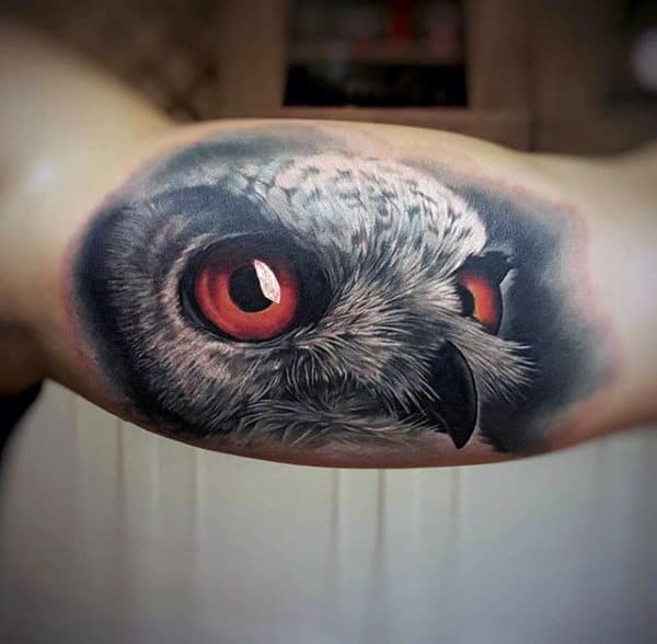 3d Realistic Owl Animal Bicep Tattoos For Guys