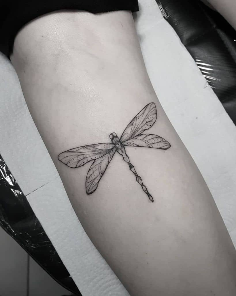 The fragile dragonfly inked into the lean arm showing a sense of ornamental glare