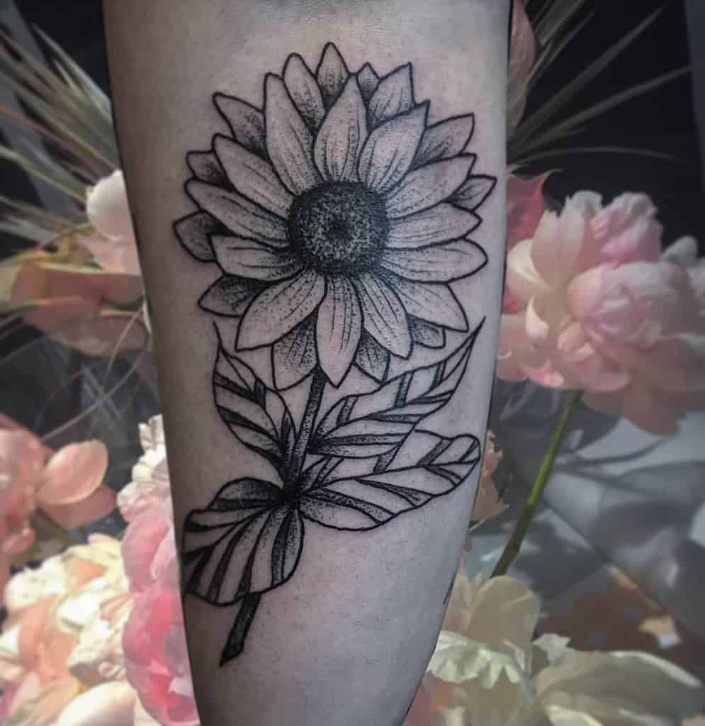 large black and grey line tattoo on lower leg of traditional sunflower with bold leaves and stem