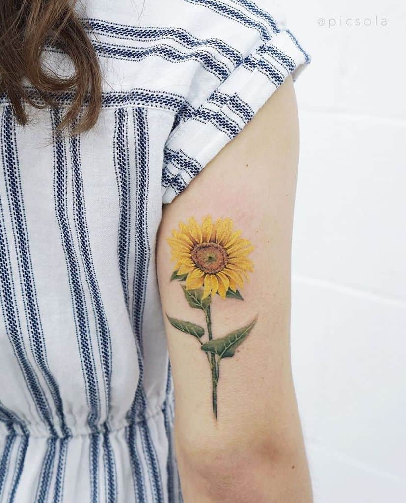 medium-sized color tattoo on back on woman's upper arm of a realistic sunflower with stem