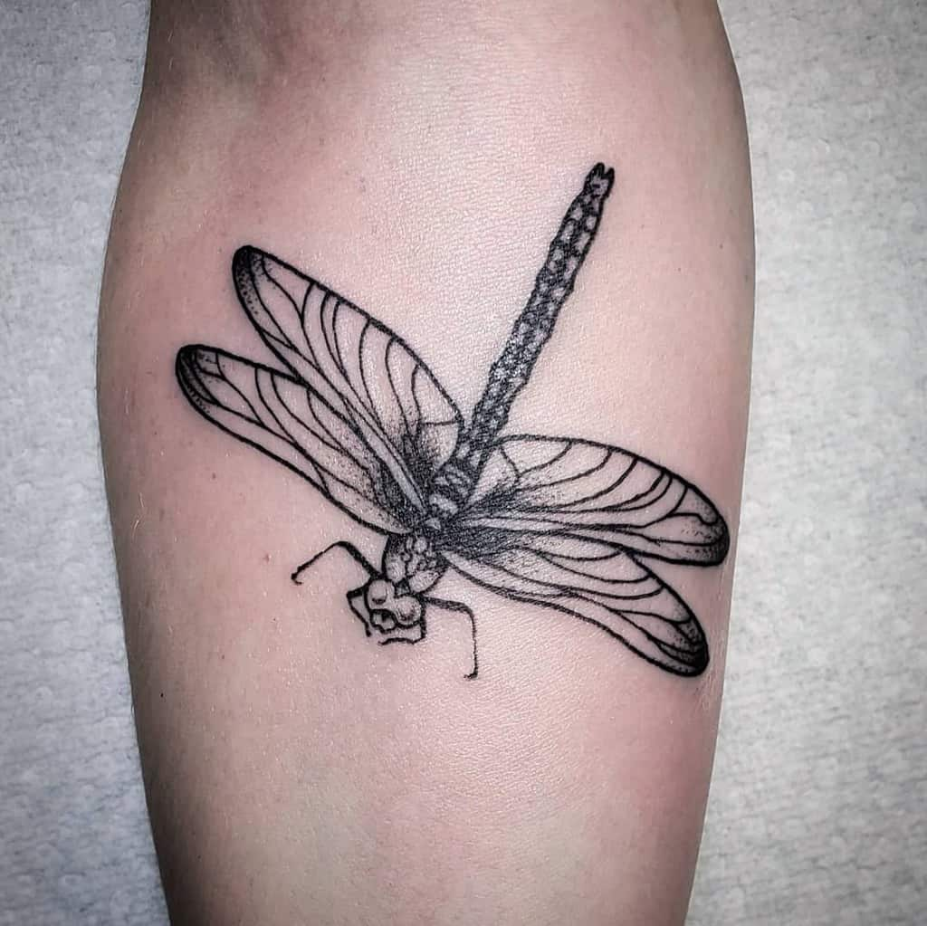 The dragonfly flying over to the hand depicting freedom and independence to live