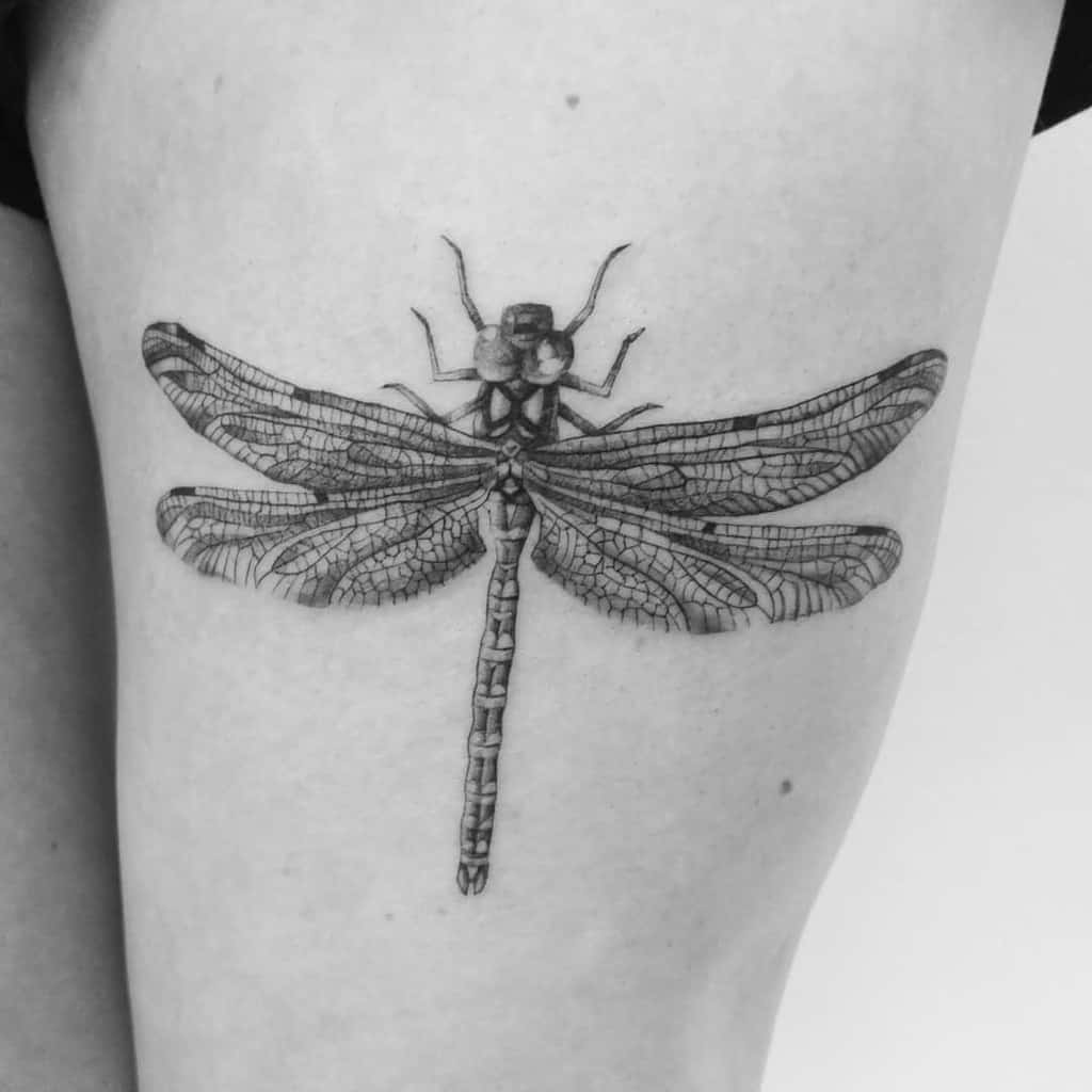 The intricate yet realistic details on the dragonfly seeped into the body depicting the deepness of the less