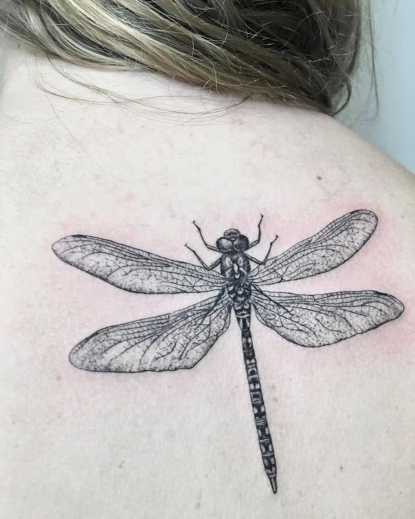 The realistic dragonfly tattoo on the bakc shoulder resonating the deepness and intricity
