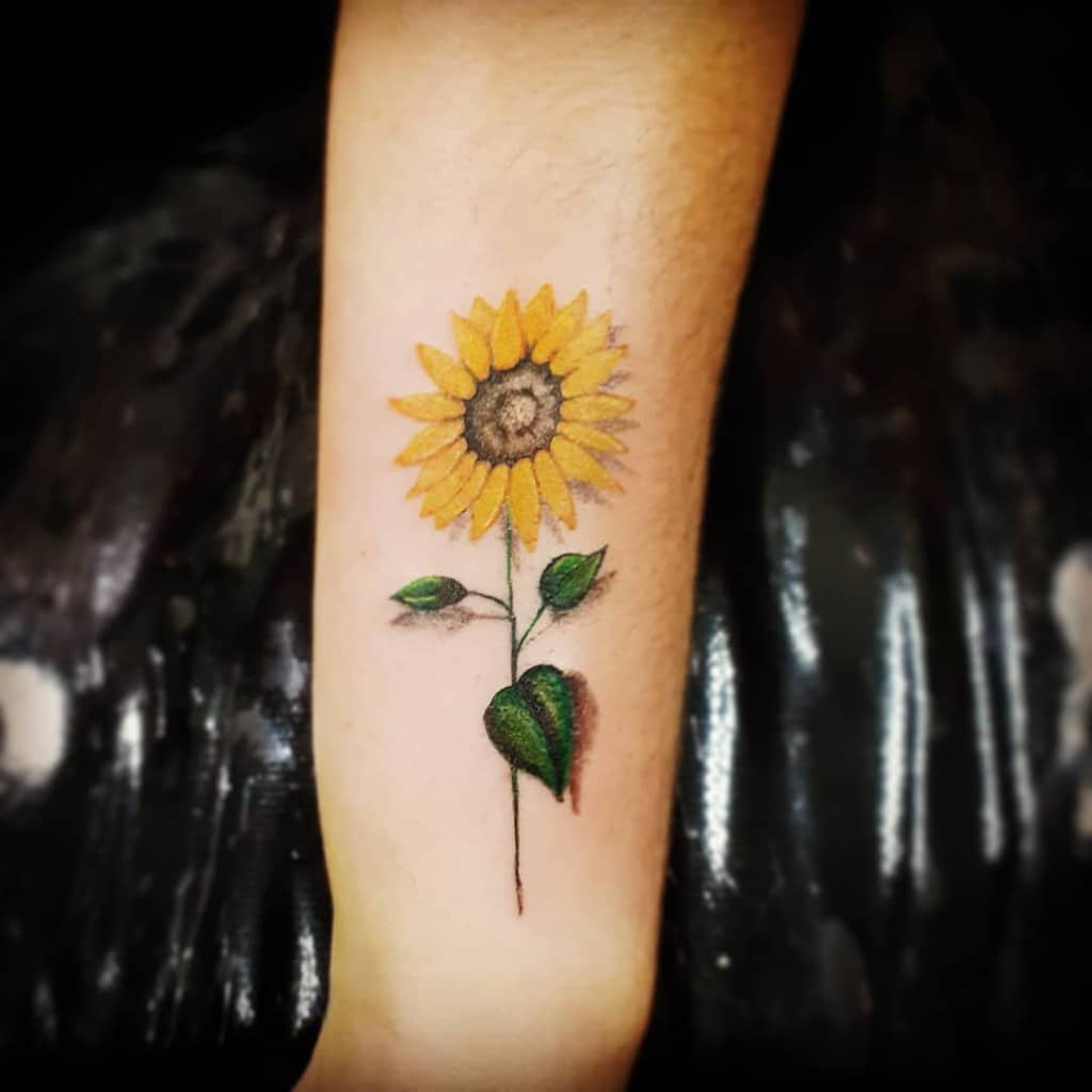 medium-sized color tattoo on upper arm of realistic sunflower with stem and leaves