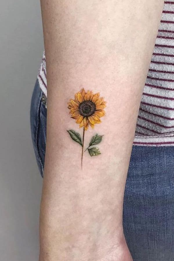small color tattoo on woman's forearm of realistic sunflower with stem