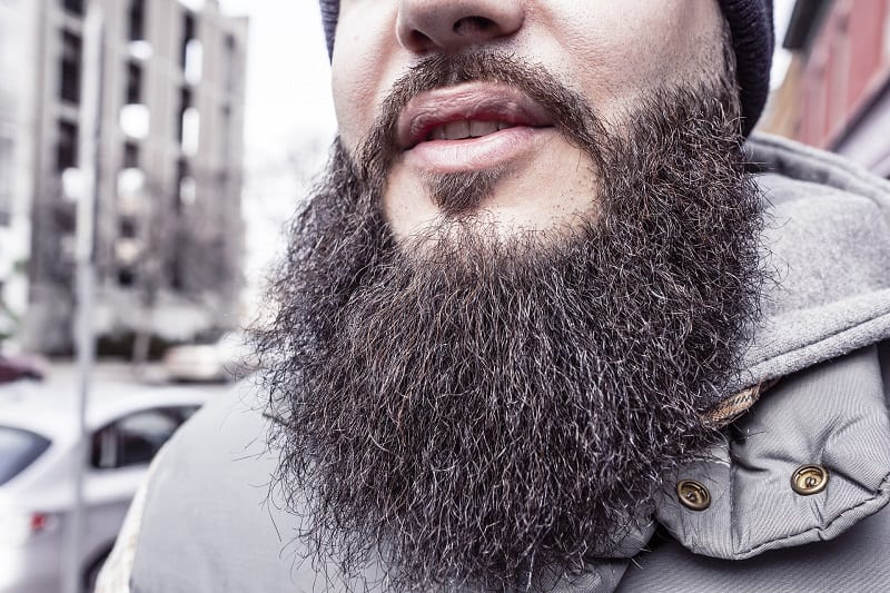 An Untrimmed Beard Growing Tips