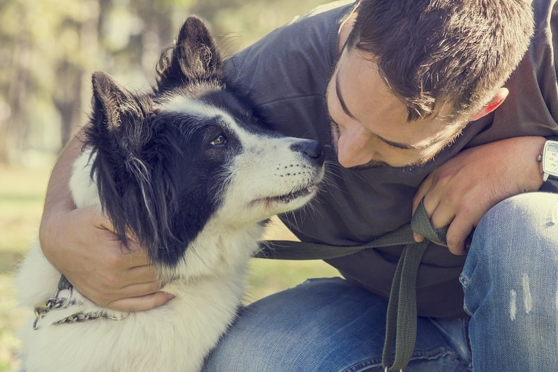Be a responsible pet owner - 100+ Plus Ways To Be A Better Man