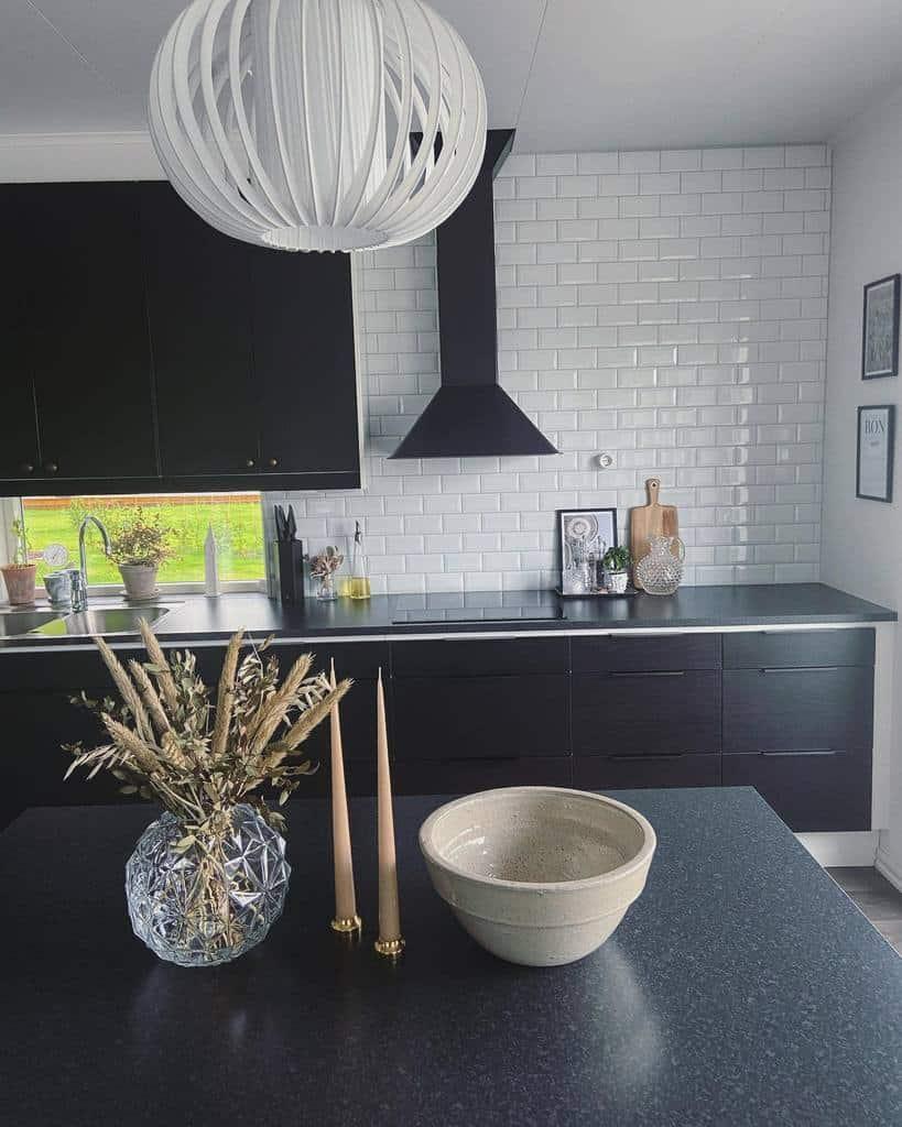 Black Kitchen Cabinet Color Ideas nybrointerior