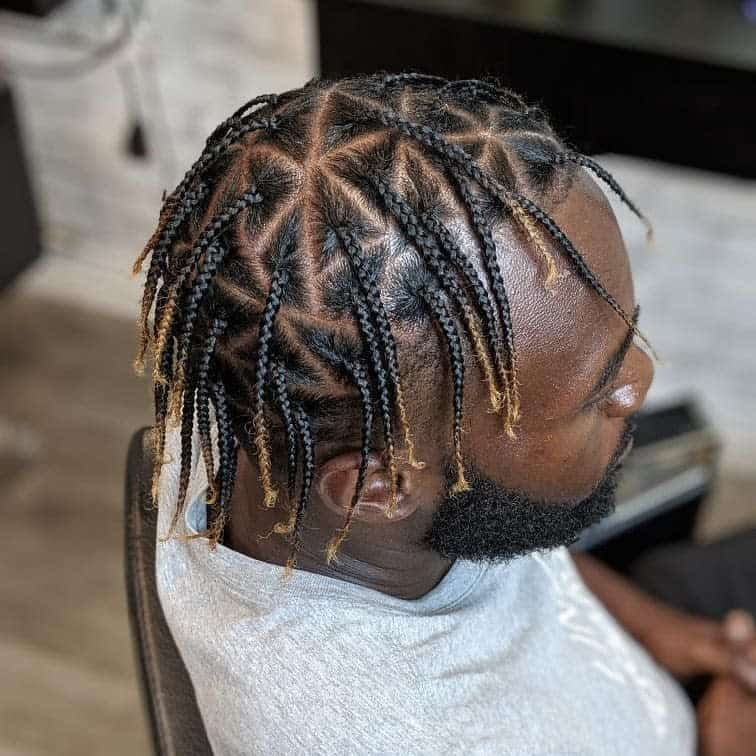 Man With Box Braids Hairstyle With Color
