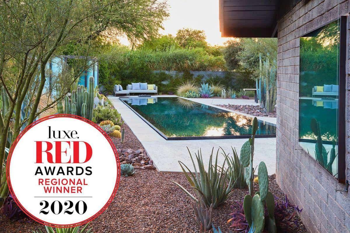 Cactus Garden Grass Free Yard Ideas -colwellshelor