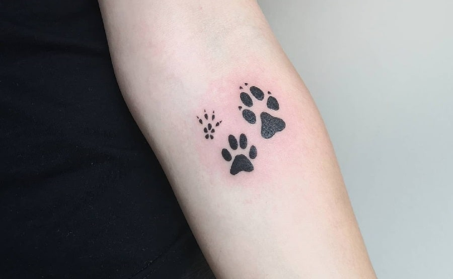 Top 65+ Best Cat Paw Print Tattoo Ideas – [2020 Inspiration Guide]