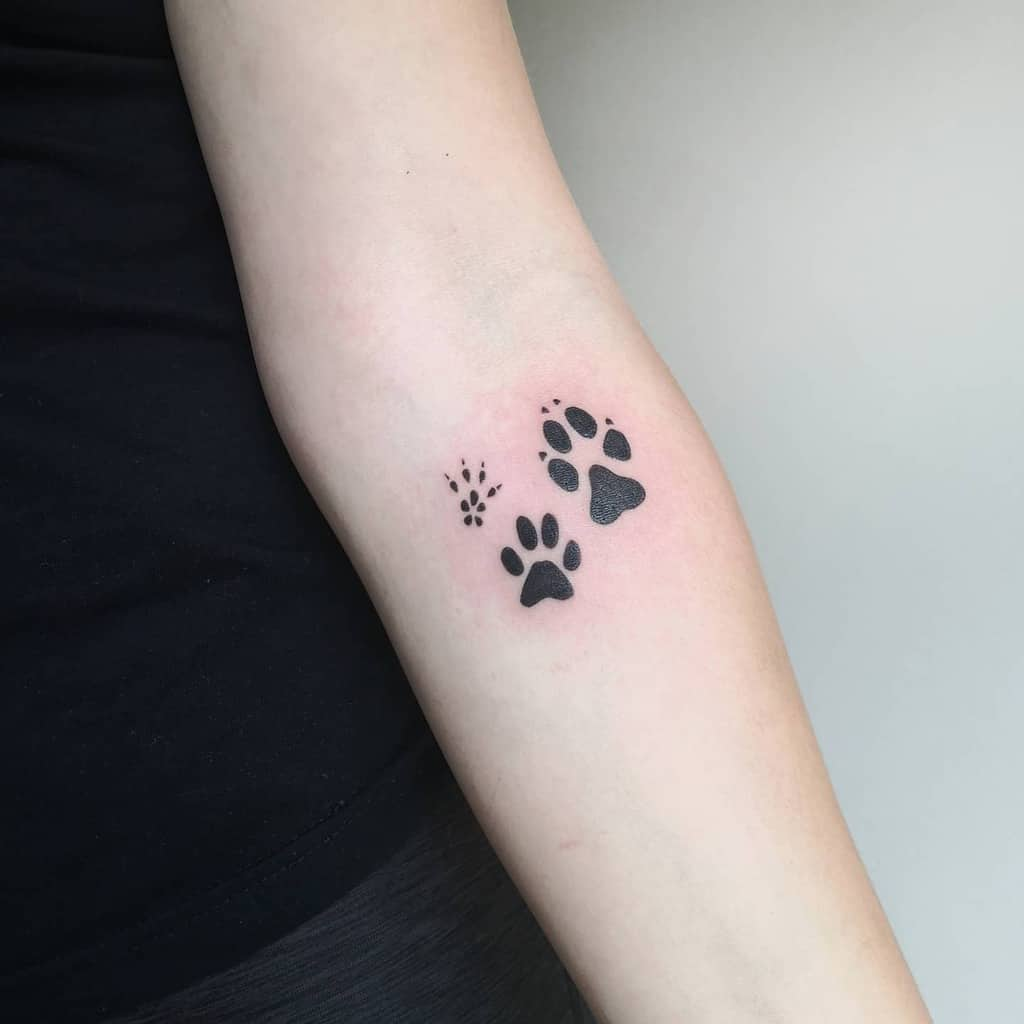Cat Paw Print Arm Tattoo ursa_tattooing