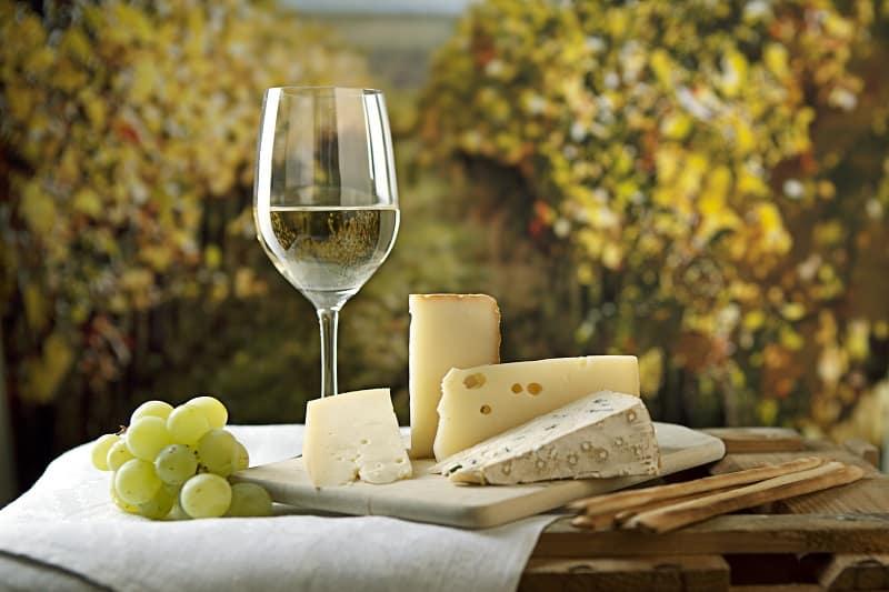 Cheese-and-White-Wine