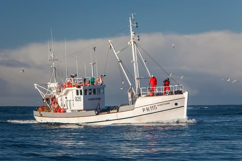 Commercial Fisherman - Best Outdoor Jobs For Outdoorsmen