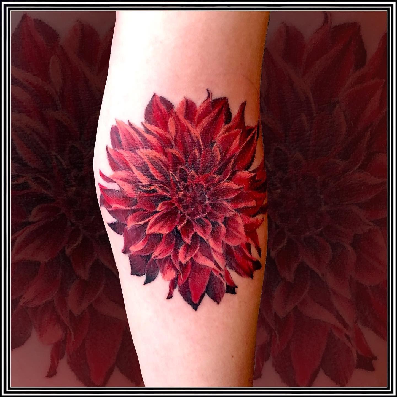 Red Dahlia Tattoo -boblewistattoos