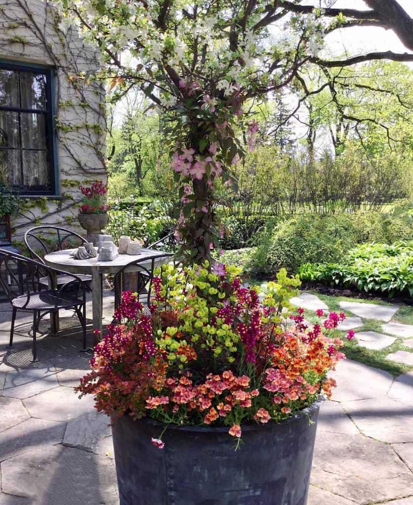 Flowers Patio Garden Ideas -rjanemorgan