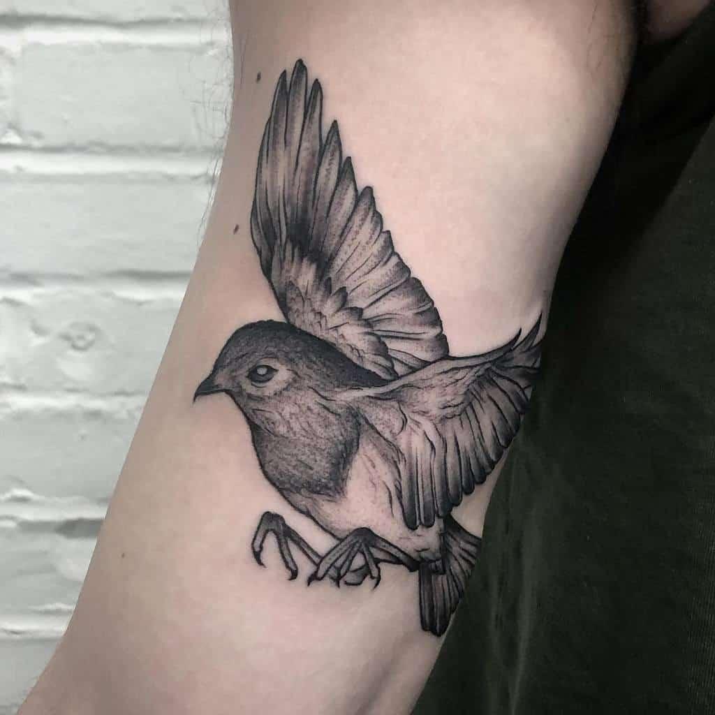 Flying Robin Tattoo Loloartsplus