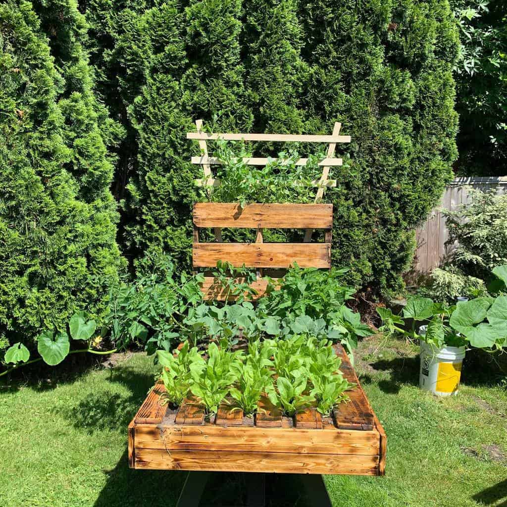 Garden DIY Backyard Ideas -jenamana