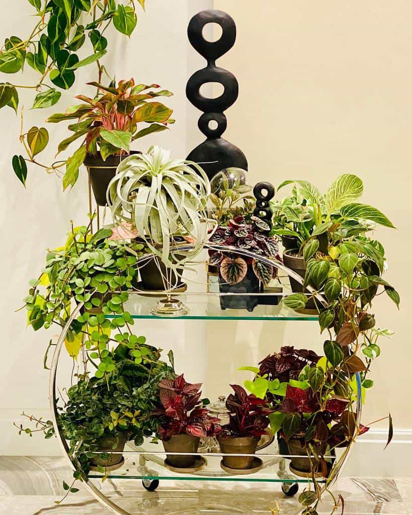 Glass Bar Cart Ideas -horticorti