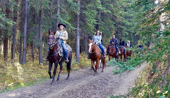 Group of People Horseriding in Forest