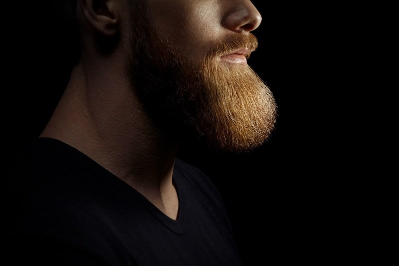 How To Soften A Beard – Tips On Putting The Prickle In Your Past
