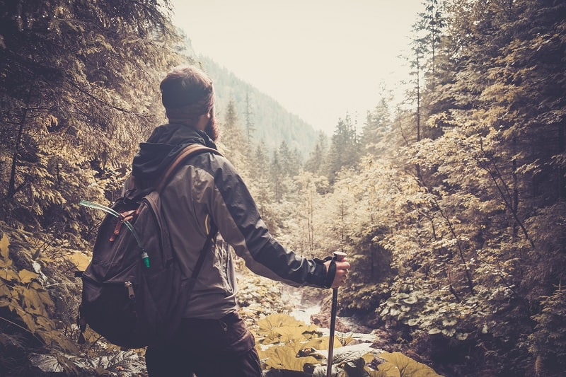 How To Survive In The Woods – On Surviving Alone With Nothing