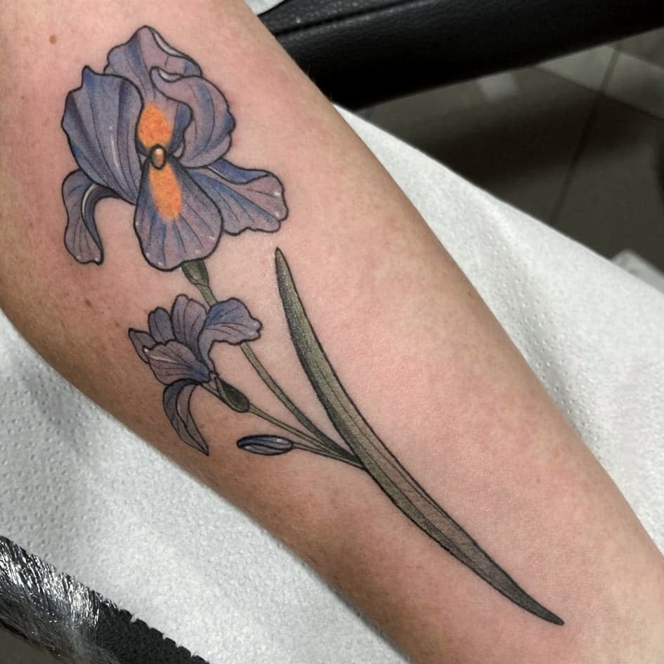Blue Iris Tattoo -diana_plescia