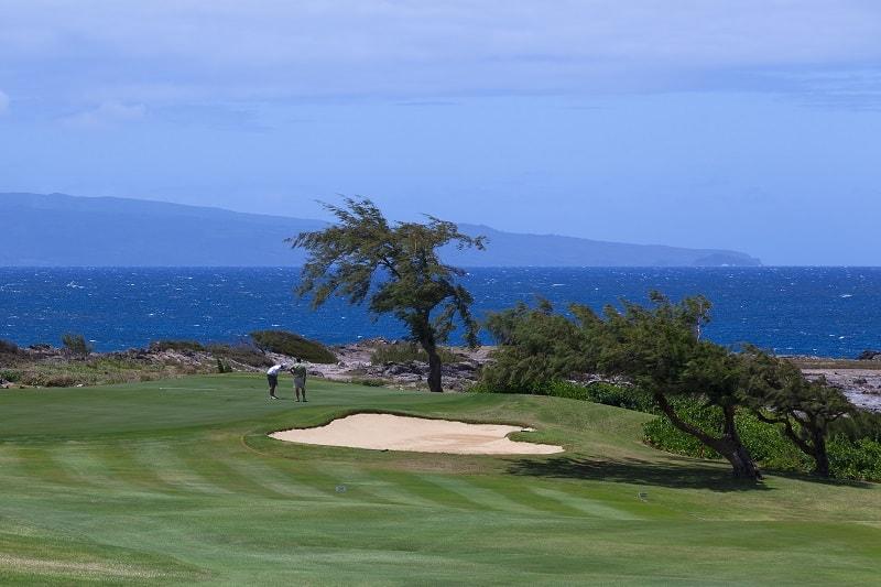 Kapalua-Golf-The-Plantation-Course-Hawaii