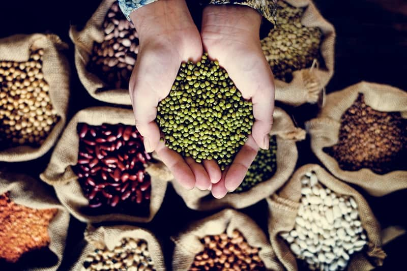 Legumes-Will-Boost-Your-Mind-and-Make-You-Feel-Great