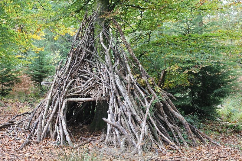 Make-Shelter-Tactics-And-Techniques-To-Master-Wilderness-Survival