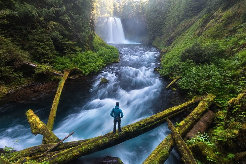 McKenzie-River-Trail-Eugene-Oregon
