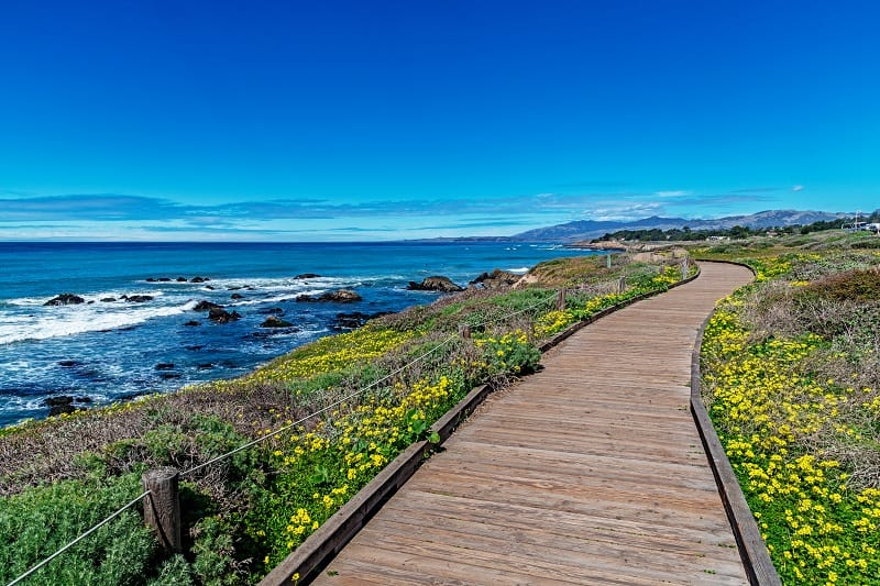 Moonstone-Beach-Cambria-California