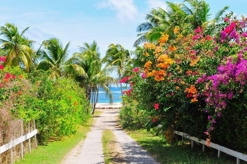 Nevis-Tropical-Island