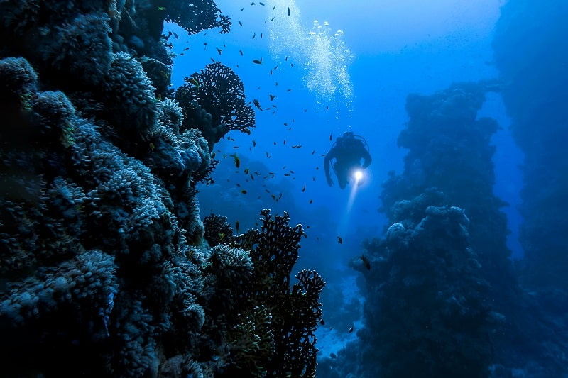 Oceanographer - Best Outdoor Jobs For Outdoorsmen