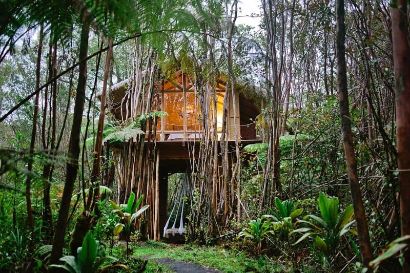 Off-grid Tropical Treehouse