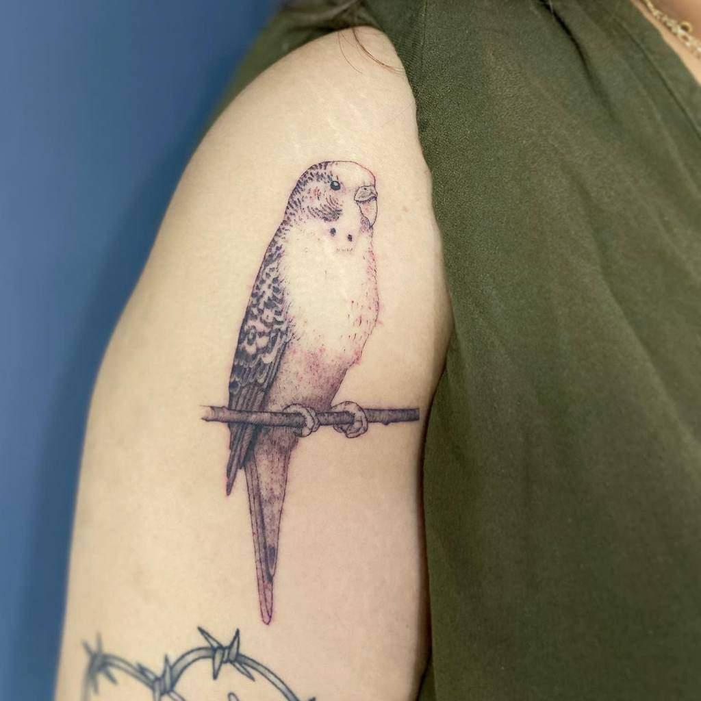 parakeet-bird-lady-single-needle-tattoo-faithjohnsentattoo