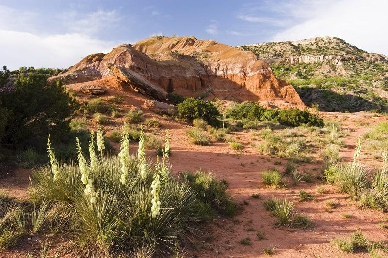 Palo-Duro-Canyon-State-Park-Texas