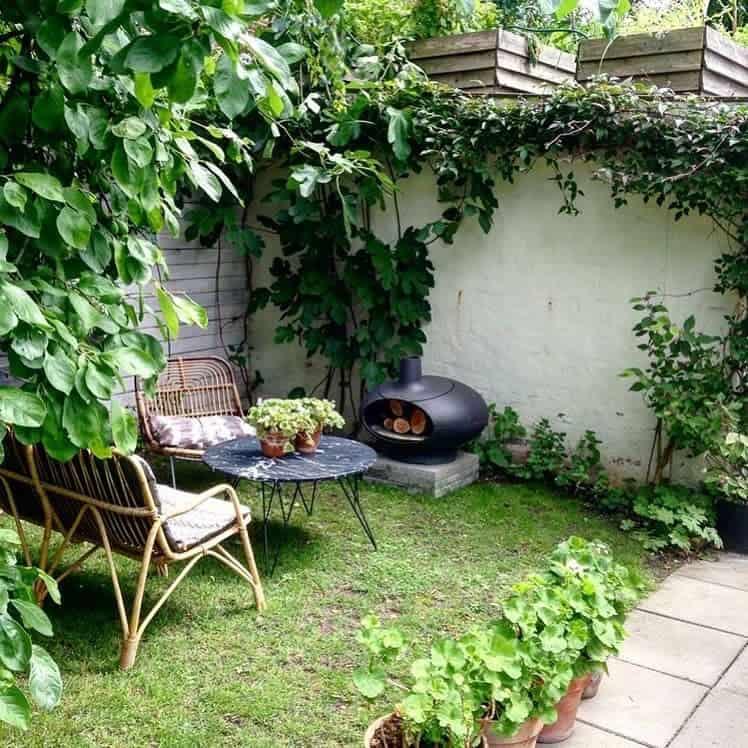 Plants Patio Garden Ideas -puntodereves