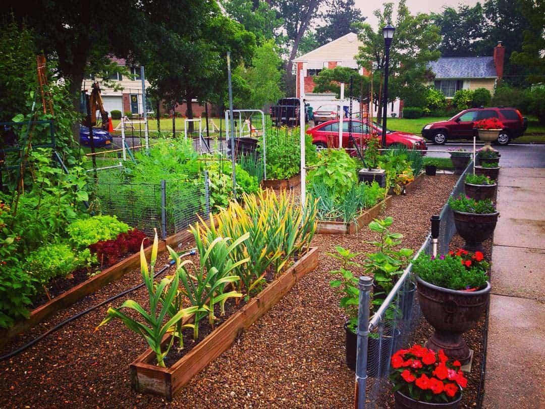 Raised Grass Free Yard Ideas -jimcharlier