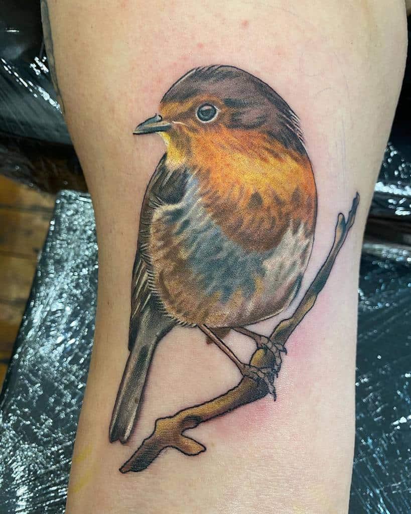Realistic Robin Tattoo Louwintertattoo