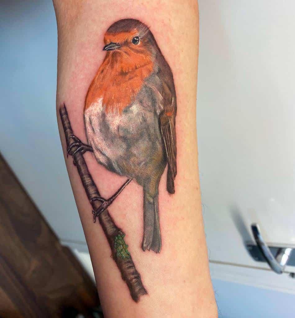 Realistic Robin Tattoo Treeharrisontattoo