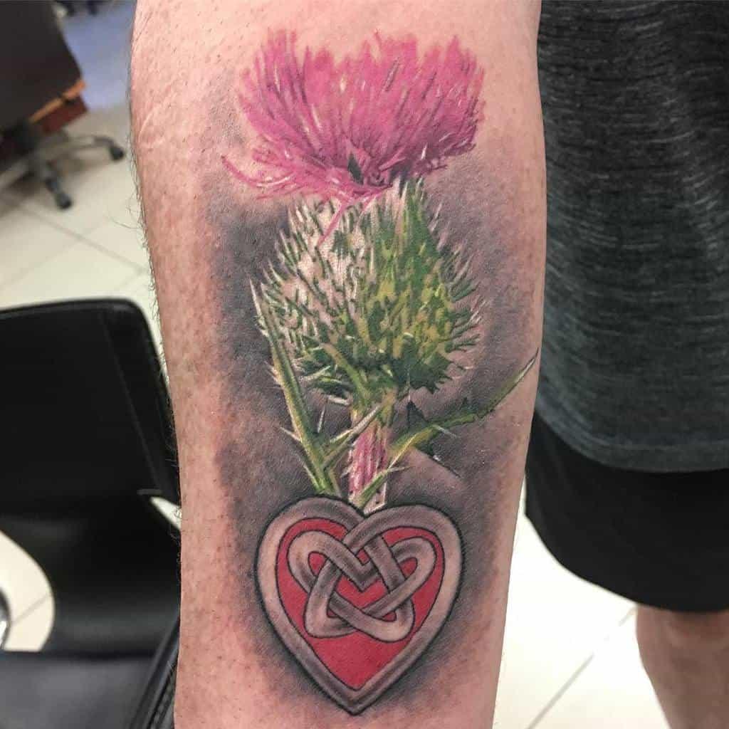 Scottish Thistle Tattoo Joevillalpando