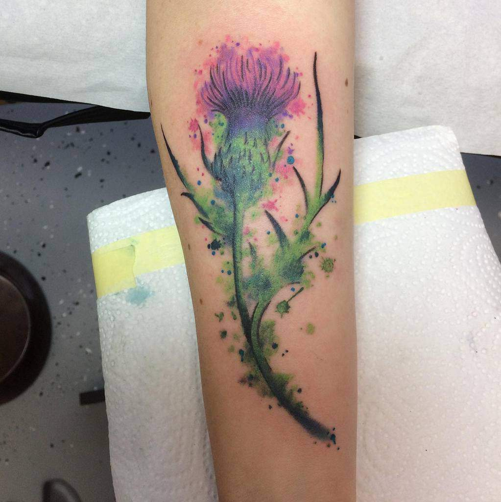 Scottish Thistle Tattoo Rebecca Roehl
