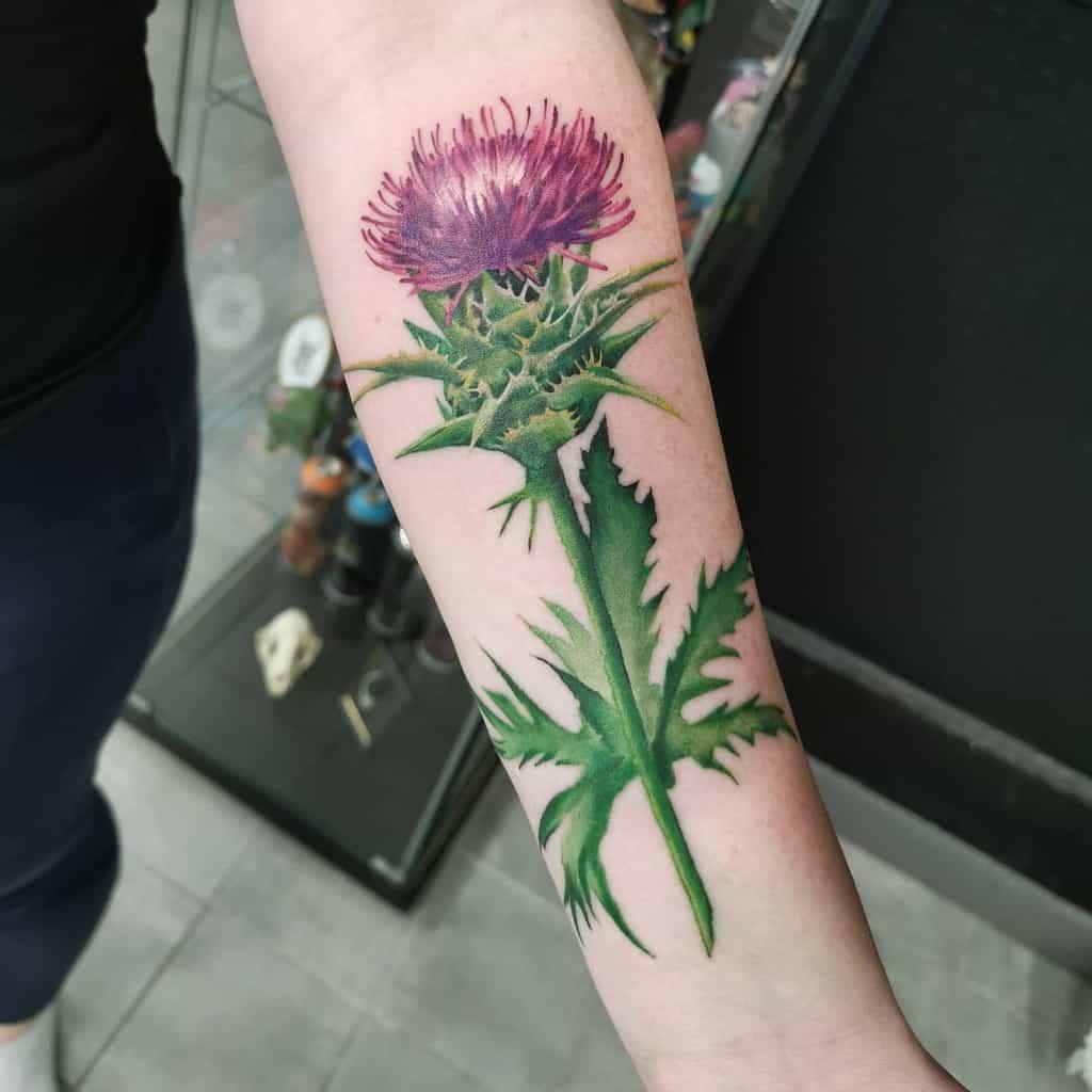 Scottish Thistle Tattoo Sagietattoo